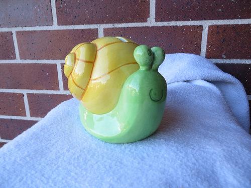 moneybox snail